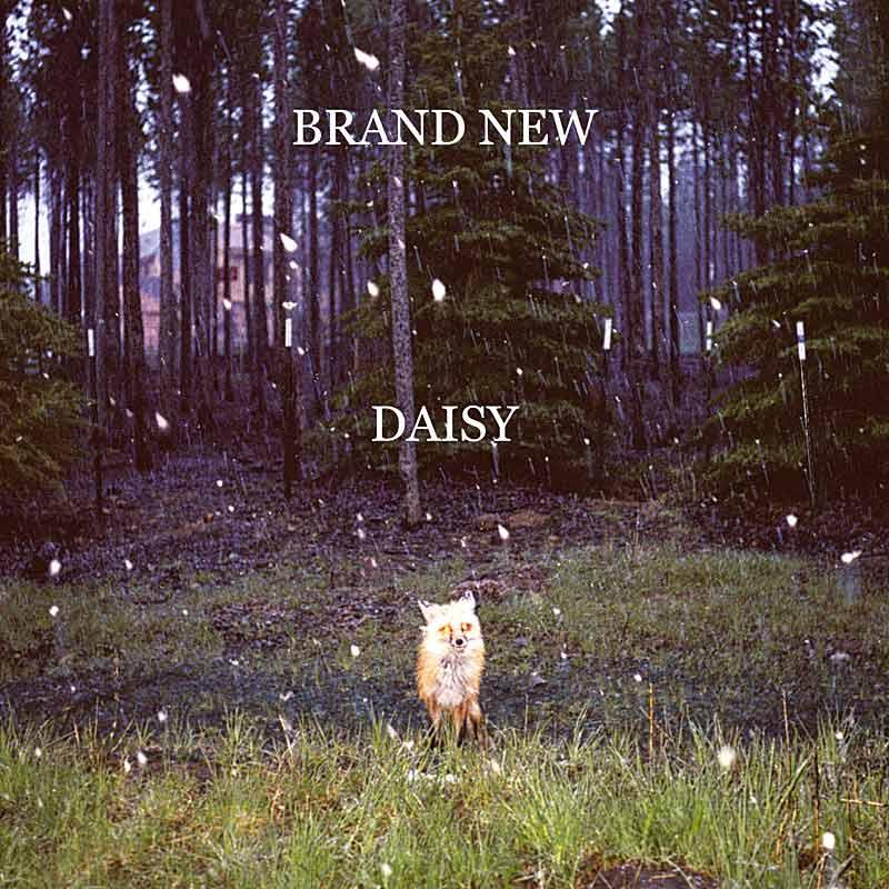 BRAND NEW – Daisy