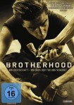 cover_brotherhood (Large)