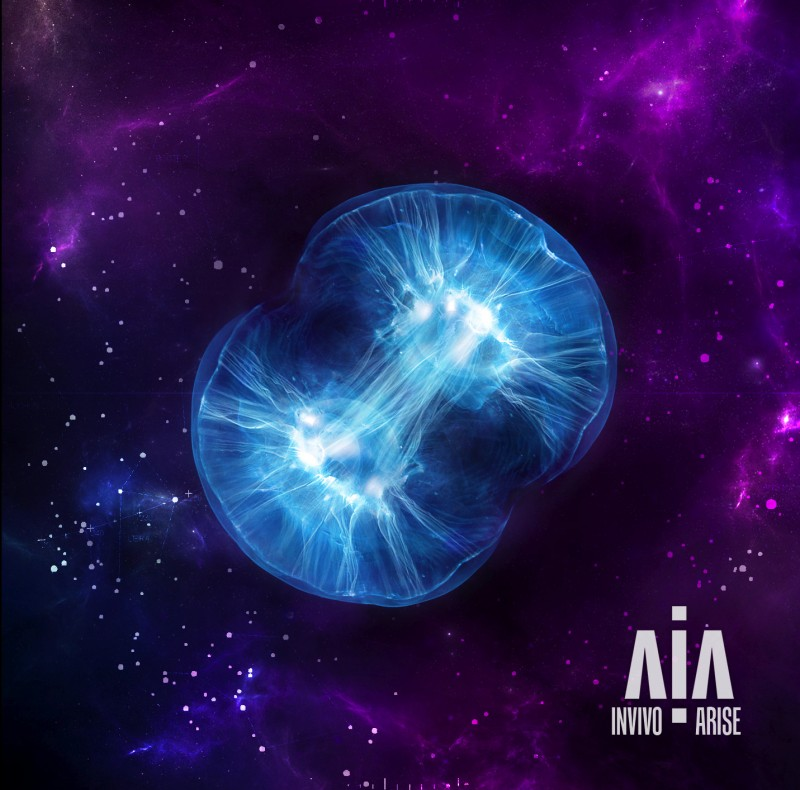 INVIVO – Arise