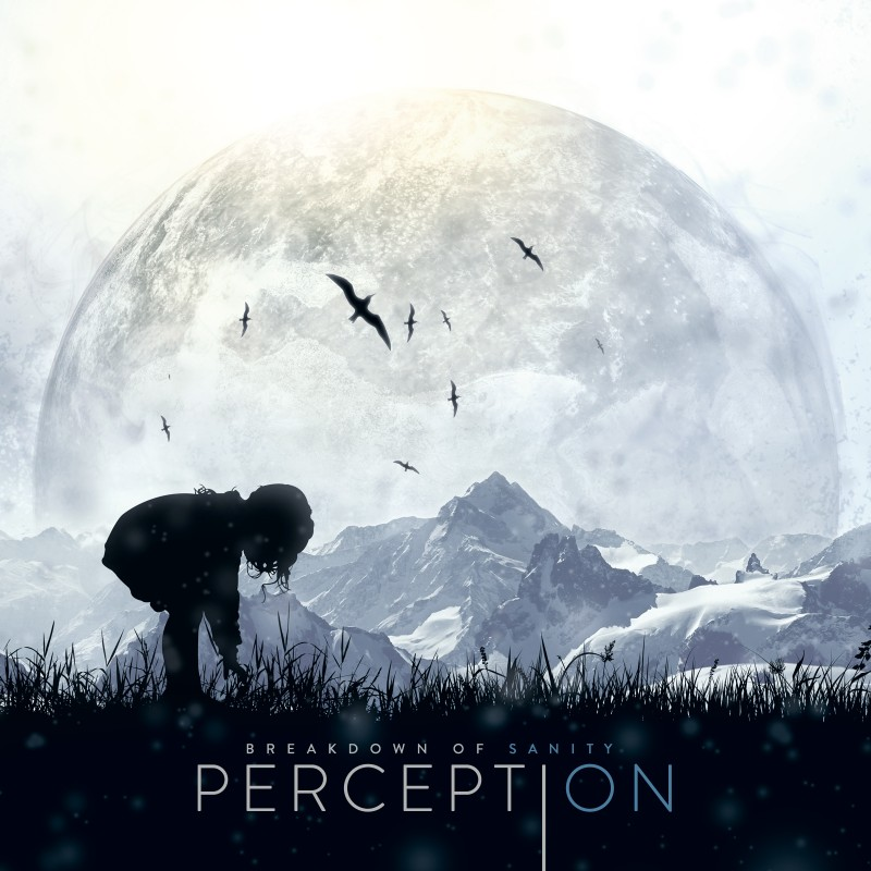 BREAKDOWN OF SANITY – Perception