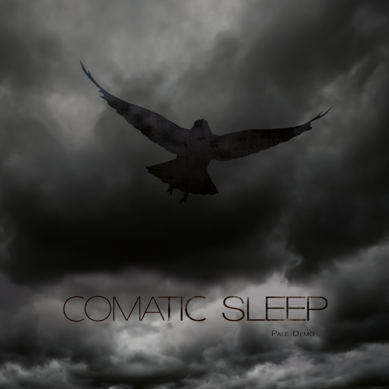 COMATIC SLEEP – Pale