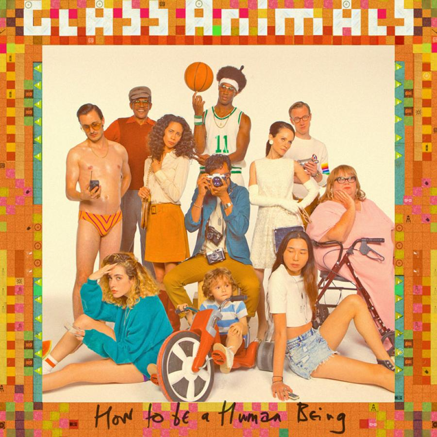 cover-glass-animals-how-to-be-a-human-being
