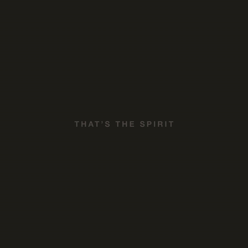 BRING ME THE HORIZON – That's The Spirit