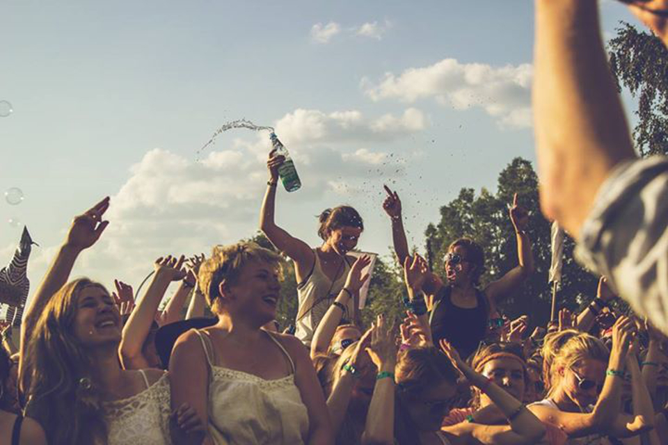 Crowd @ Dockville by Harry Horstmann