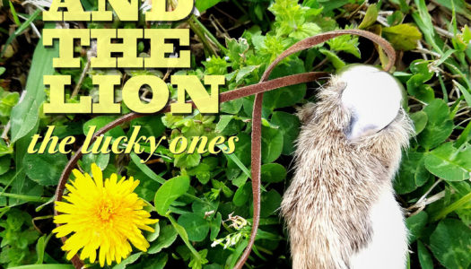 LAYDEN AND THE LION – The Lucky Ones