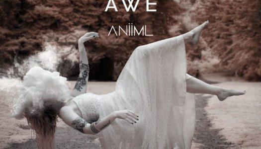 ANIIML – Oh Awe